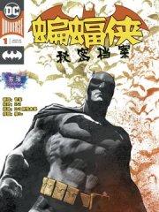 蝙蝠侠:秘密档案漫画