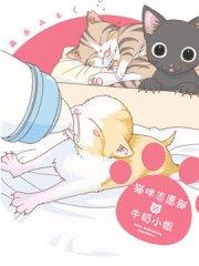 猫咪志愿部的牛奶小姐漫画