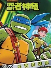 忍者神龟:小金书与绘本集漫画