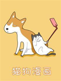 猫狗漫画漫画