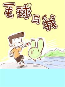 毛球与我漫画