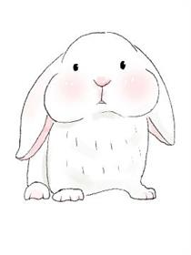 一只叫大神的兔子