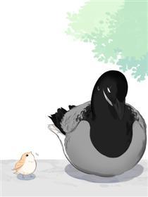 南方的鸟和北方的鸟漫画