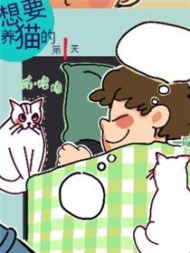 想要养猫的第一天漫画